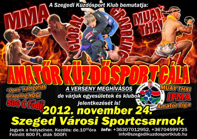 Az Amatőr Küzdősport Gála plakátja