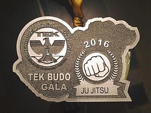 TEK 2016 évi Budo és Küzdősport Gála
