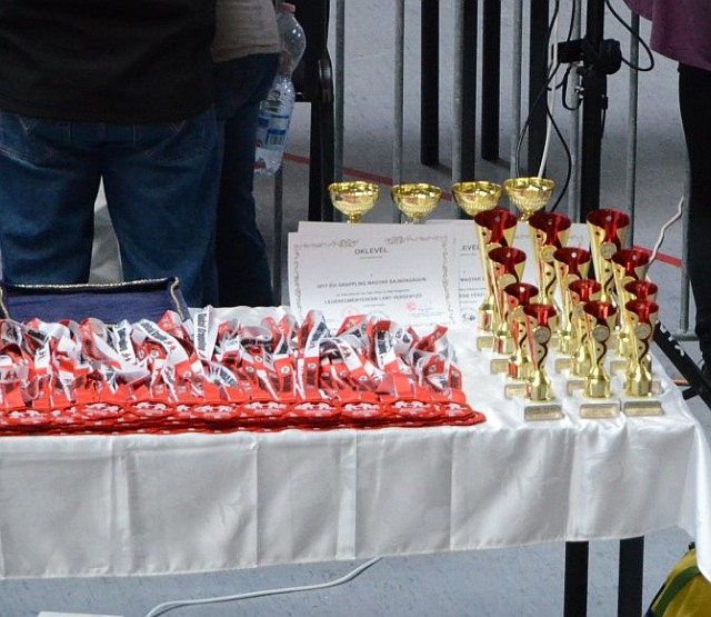A Magyar Bajnokság kupái és az érmek egy része