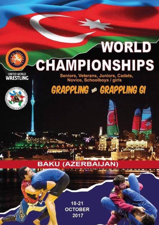 A Világbajnokság plakátja