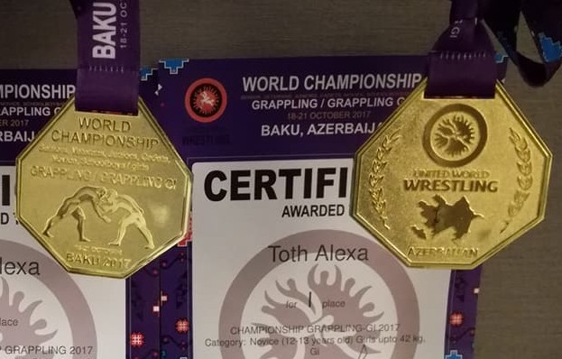 A Világbajnokság érmei