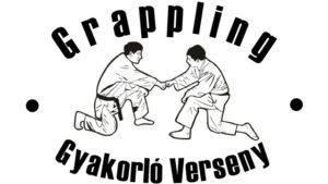 Gyakorlo_Verseny_emblema_FB_kiskep