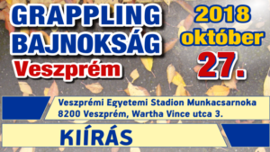 Poster- A4 - (201-2018-s02) -F- 02. - Fordulo_VESZPREM_Wp_Featured_Kiir640x360